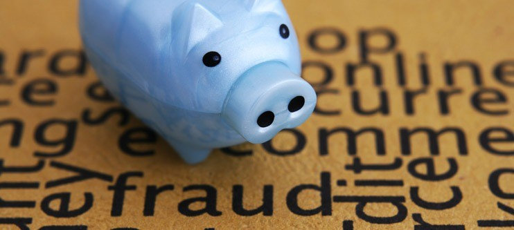 Image of piggy bank that's safe from fraud
